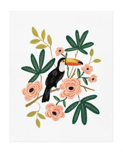 Rifle Paper ArtPrint apm106 toucan
