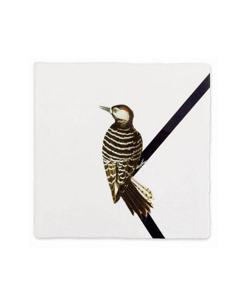 Storytiles woodpecker 1