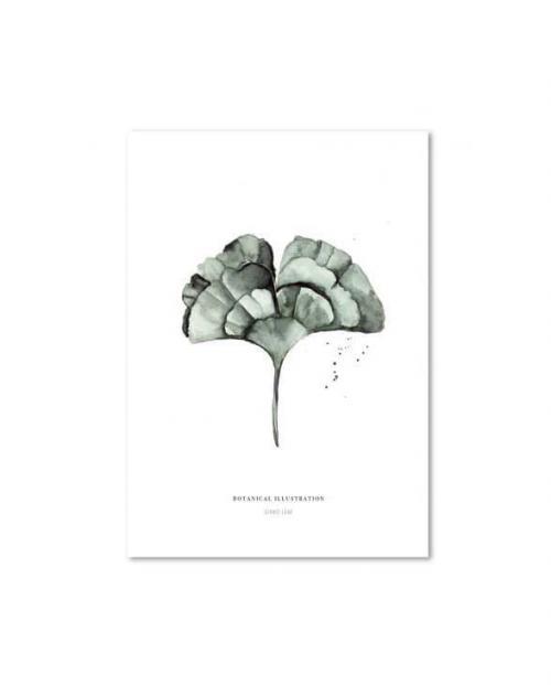 Leo la Douce Art Print ginko leaf