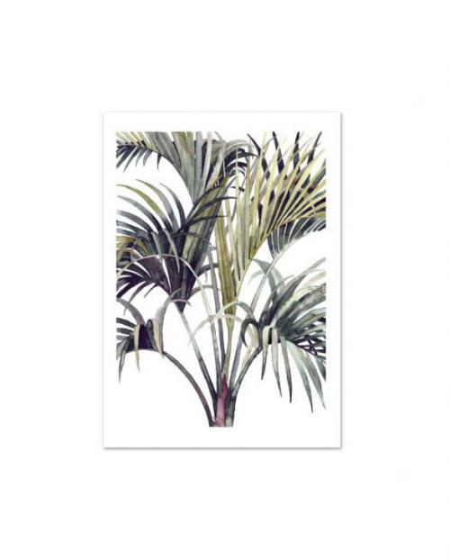 Leo la Douce Artprint Wild Palm