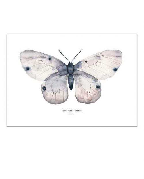 Leo La Douce KD Apollo Schmetterling A4