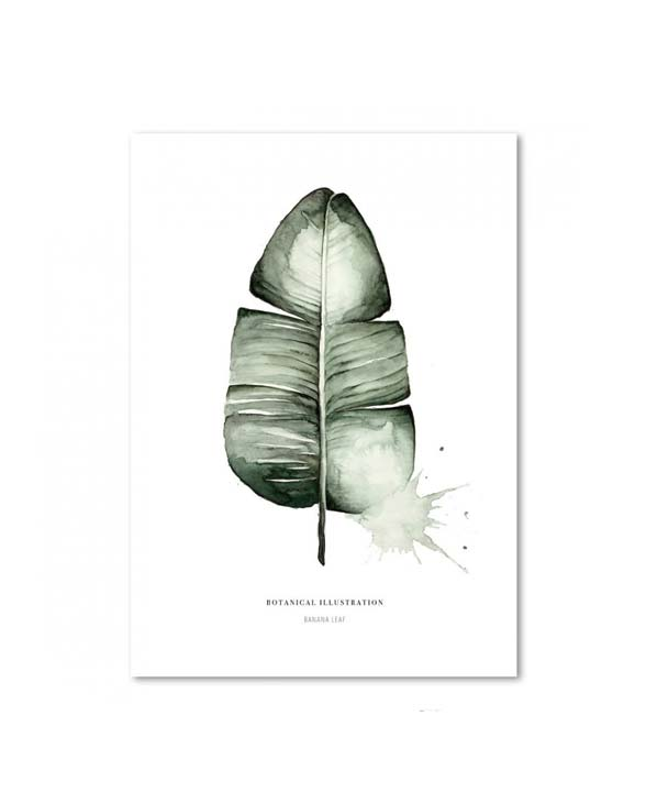 Leo La Douce KD Banana Leaf