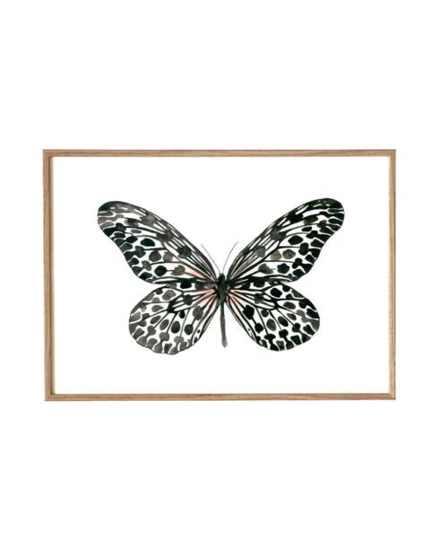 Leo La Douce KD 177 black butterfly